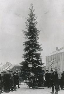 [Det første juletreet på torvet (1921)  fra Trondheim byarkivs flickr-strøm]